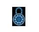 aarusha security